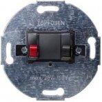 Audio lizdas 1-gubas (mechanizmas)