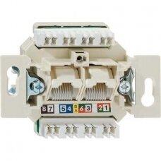 Informacinė jungtis RJ45 6 kat.